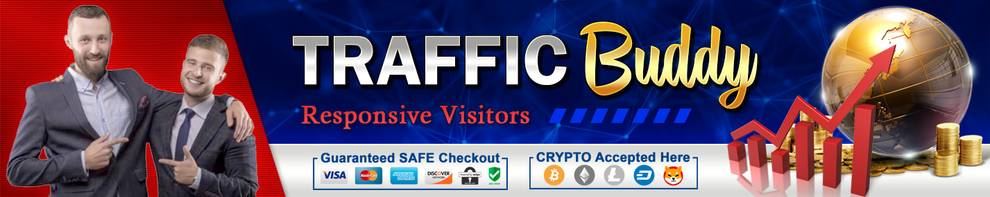 Buy website traffic from traffic buddy